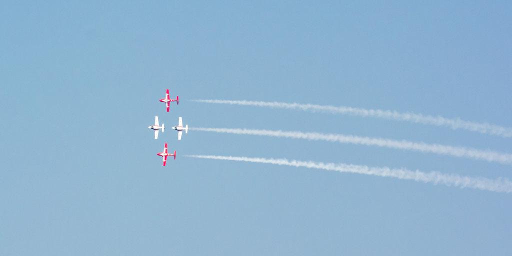 Snowbirds-4.jpg